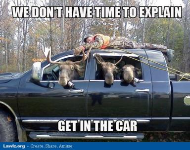 moose-beer-man-tied-truck-we-dont-have-time-to-explain-get-in-the-car-funny-meme.jpg